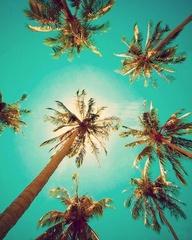 verano3
